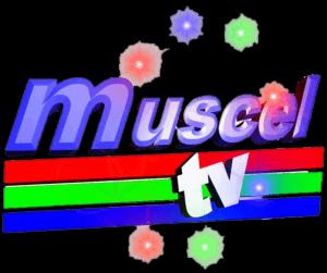 Muscel TV